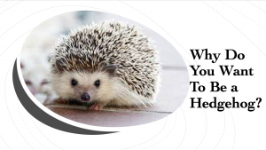 Why do you want to be a hedgehog