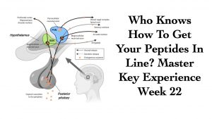 Get Your Peptides In Line